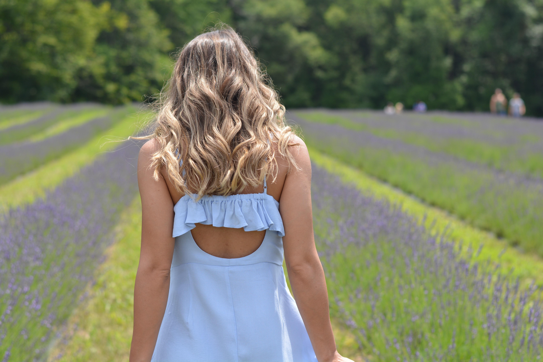 Lavender Farm - Style Not Brand